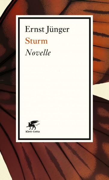 Sturm. Novelle